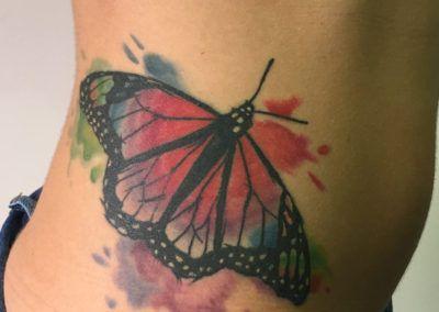 mariposa-acuarela